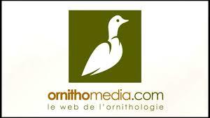 ornithomedia.jpg